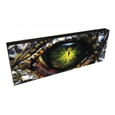 Нарды подарочные Глаз дракона