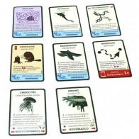 Настольная игра Эволюция. Континенты (Evolution)