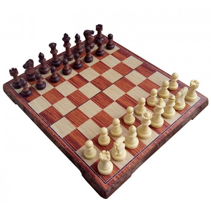 Шахи магнітні T74-D391